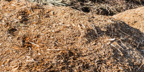 Mulching for Microbes