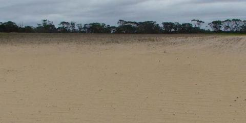 Managing sandy blow-outs and non-wetting soils through claying